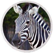 Zebra Symmetry  Round Beach Towel