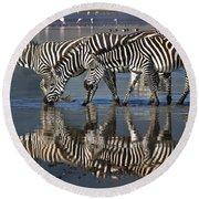 Zebras Drinking Ngorongoro Crater Tanzania Round Beach Towel