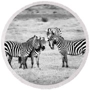 Zebras In Black And White Round Beach Towel