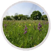 Ancient Hay Meadow Round Beach Towel