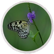 Butterfly On Flower  Round Beach Towel by Sandy Keeton