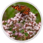 Comma Butterfly Round Beach Towel