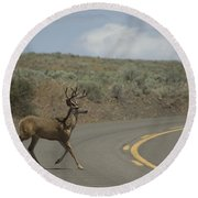 Deer 1 Round Beach Towel