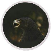 Golden Eagle - A Portrait Round Beach Towel