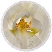 In The Heart Of The Orchid Round Beach Towel