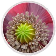 Inner Most Poppy Round Beach Towel