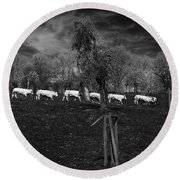 Line Of Cows Round Beach Towel