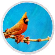 Male Northern Cardinal Perched On Tree Branch Round Beach Towel