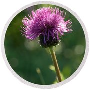 Melancholy Thistle Round Beach Towel