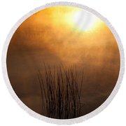 Mist And Lake Reeds At Sunrise Round Beach Towel