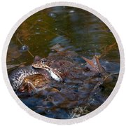 Mixed Frogs Round Beach Towel