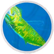 Prized Dolphin Painting Round Beach Towel