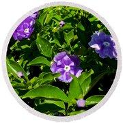 Purple Flowers In Pilgrim Place In Claremont-california Round Beach Towel