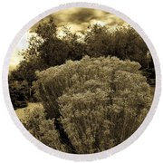 Shrub In Santa Fe Round Beach Towel
