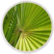 Spiny Fiber Palm Round Beach Towel