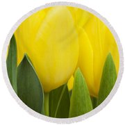 Spring Yellow Tulips Round Beach Towel
