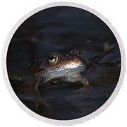 The Common Frog 1 Round Beach Towel