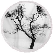 Tree In The Snow Round Beach Towel