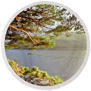 Warmth  Of The Pine Branch. Round Beach Towel