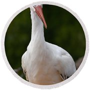 White Stork 4 Round Beach Towel