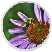 02 Bee And Echinacea Round Beach Towel