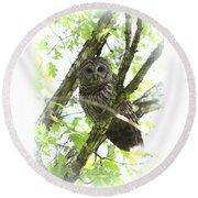 0304-002 - Barred Owl Round Beach Towel