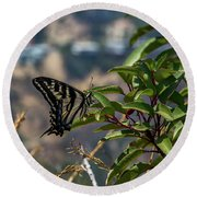 0518- Butterfly Round Beach Towel