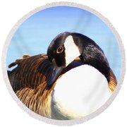 0932 - Canada Goose Round Beach Towel