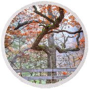 0981 Fall Colors At Starved Rock State Park Round Beach Towel