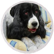 #940 D1031 Farmer Browns Springer Spaniel Round Beach Towel