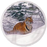 A Blur Of Tiger Round Beach Towel