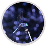 A Dragonfly Round Beach Towel
