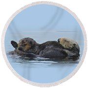 A Mama Sea Otter And Her Babe Round Beach Towel