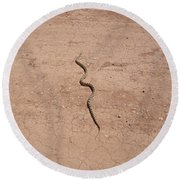 A Snake On The Dirt Round Beach Towel