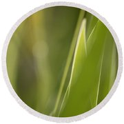 Abstract Iris Leaves And Buds Round Beach Towel