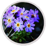 Alaskan Wild Flowers Round Beach Towel