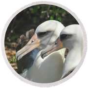 Albatross Lovers Round Beach Towel