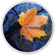 All About Autumn Round Beach Towel