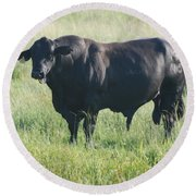 American Cow Round Beach Towel