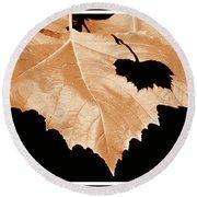 American Sycamore Leaf And Leaf Shadow Round Beach Towel