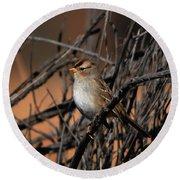 American Tree Sparrow Round Beach Towel