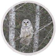 Angel Owl Round Beach Towel