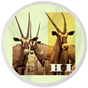 Antelopes Round Beach Towel