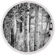 Aspen Trees In Black And White Round Beach Towel