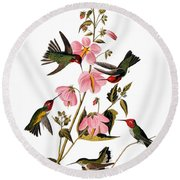 Audubon: Hummingbird Round Beach Towel