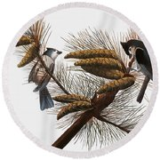 Audubon: Titmouse Round Beach Towel