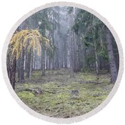 Autumn Coniferous Forest In The Morning Mist Round Beach Towel