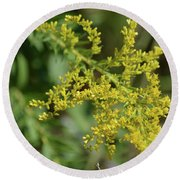 Autumn Goldenrod  Round Beach Towel