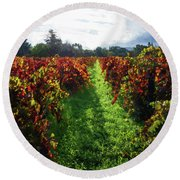 Autumn Vineyard In The Morning  Round Beach Towel