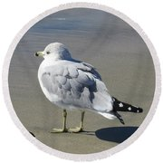 Beach Bum Photograph Round Beach Towel